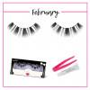 GladGirl® False Lash Kit - February