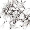 Glad Lash Double V Volumizing Lashes Black - 100 pieces loose